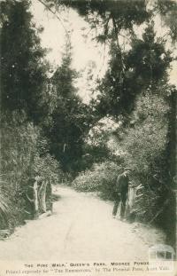 The Pine Walk, Queen's Park, Moonee Ponds, 1905