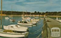 The pier at Mornington, 1961