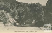 Devonshire Lane, Mount Macedon, 1949