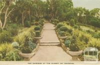 The Gardens at the Summit, Mount Macedon, 1955