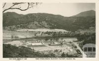 View Overlooking Masonite Factory, Eildon