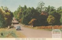 Wombat Creek on the Highway near Orbost, 1948