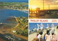 Aerial overlooking San Remo, Sunrise at Newhaven and Pelicans, Phillip Island, 1983