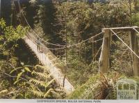 Suspension Bridge, Bulga National Park