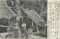 Bush Hut, Gippsland, 1914