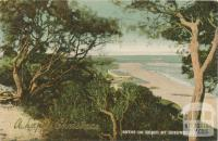 Baths on Beach at Queenscliff
