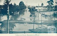 Tallarook Street, Seymour in Flood, 1908
