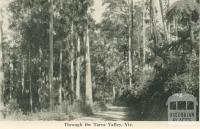 Through the Tarra Valley, 1949