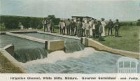 Governor Carmichael and party, Irrigation Channel, White Cliffs, Mildura, c1910