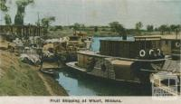 Fruit shipping at wharf, Mildura