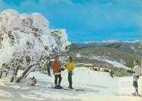 Beginner's ski slopes, Mount Buller