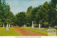 Prime Ministers Avenue, Ballarat, 1958
