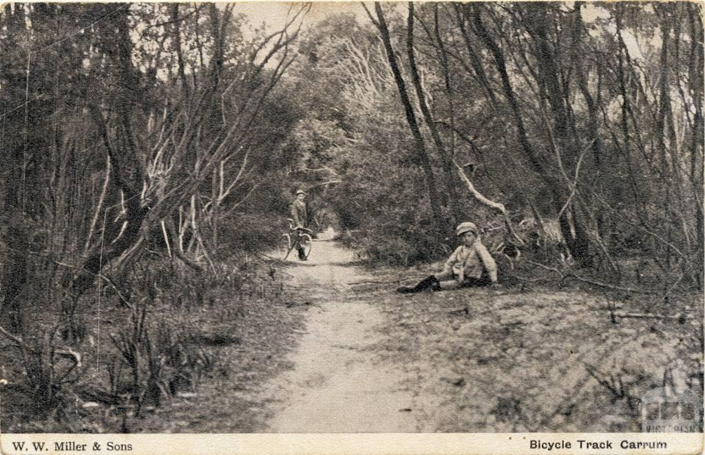 Bicycle track, Carrum