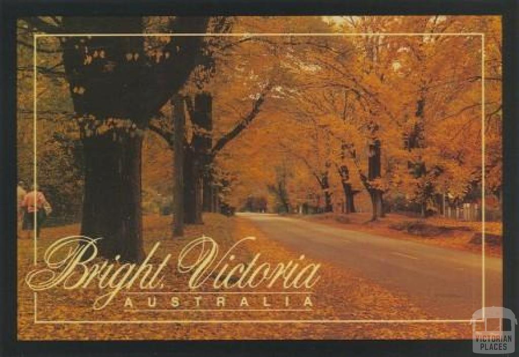 Delany Avenue, Bright