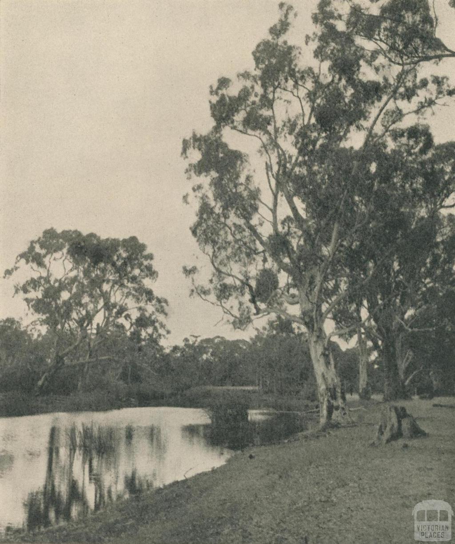 On the Glenelg River, 1943