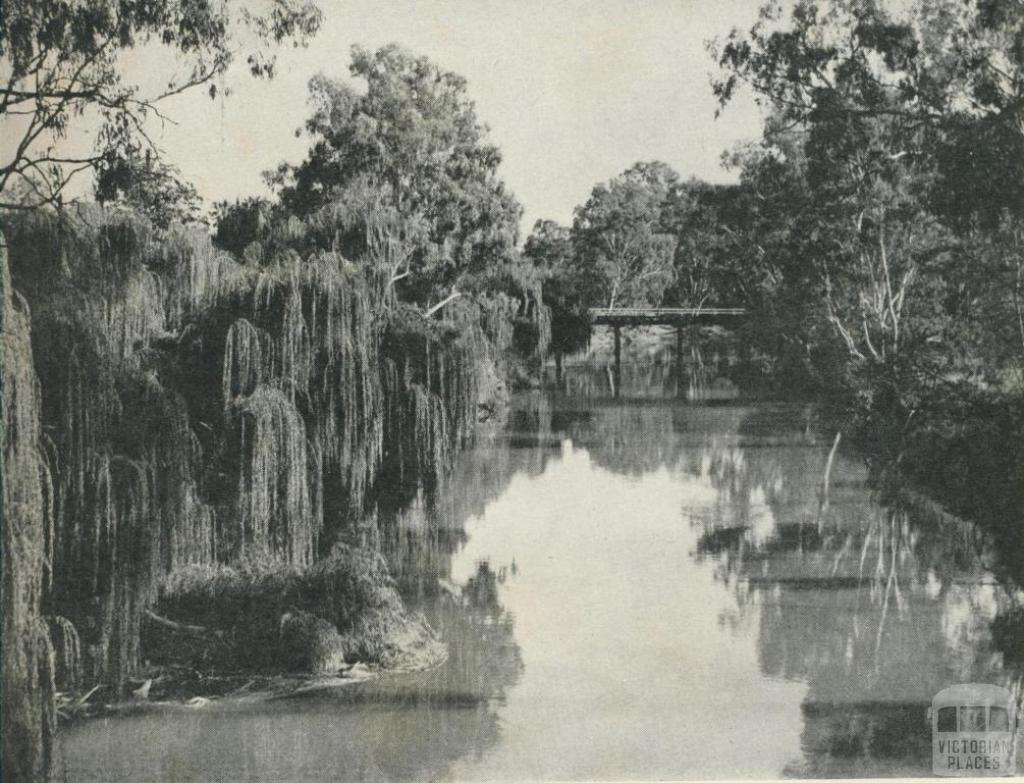 Looking towards the stock bridge over the Ovens River, Ovens Valley, 1960
