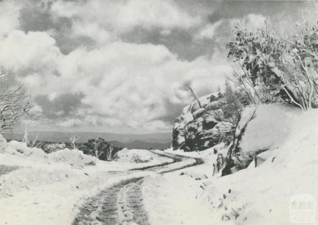Road to Cathedral, Mount Buffalo, c1960