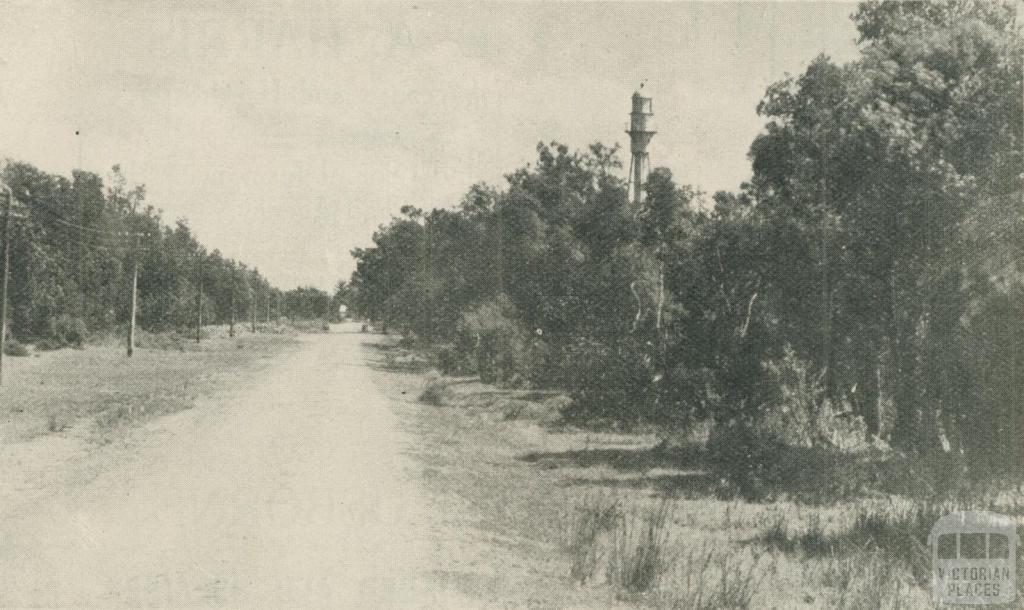 The Main Road, Rosebud