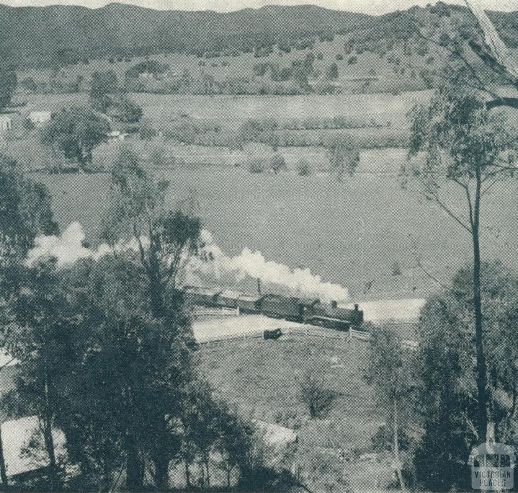 Train transportation Myrtleford, 1951