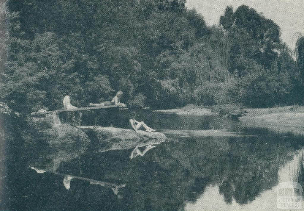 Nug Nug Creek swimming hole, Myrtleford, 1951