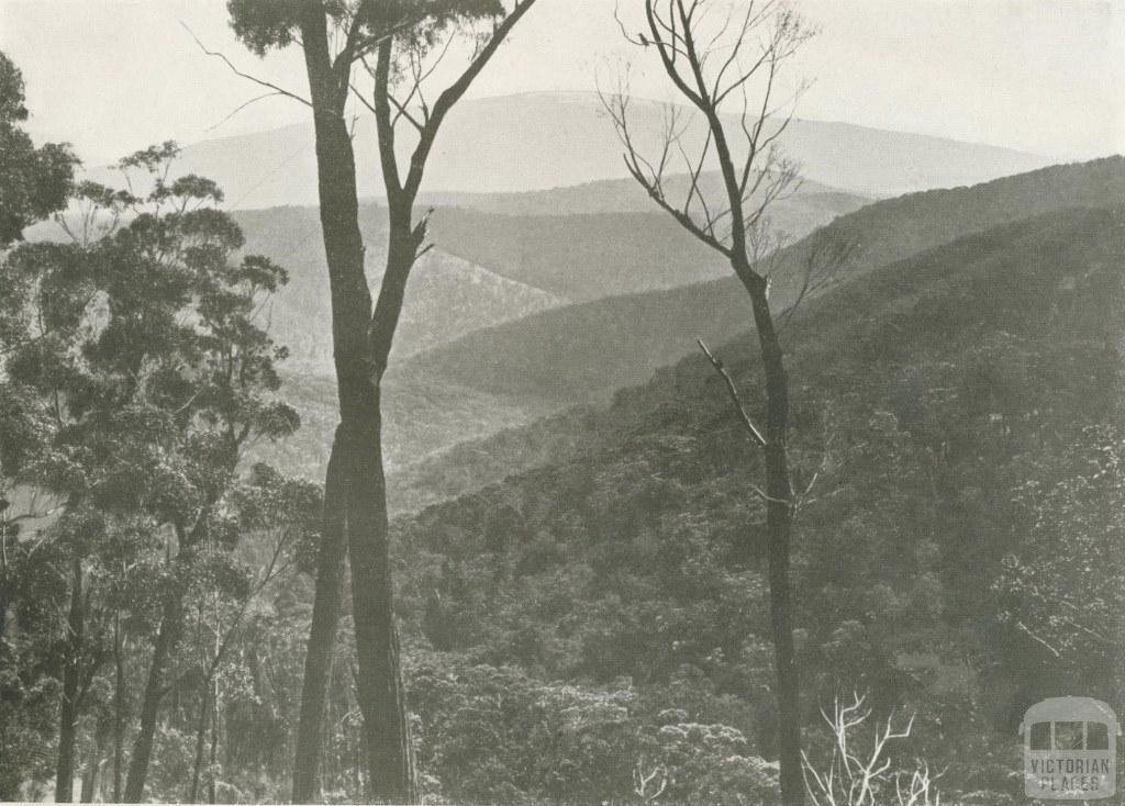 Mount Baw Baw, Walhalla, c1910