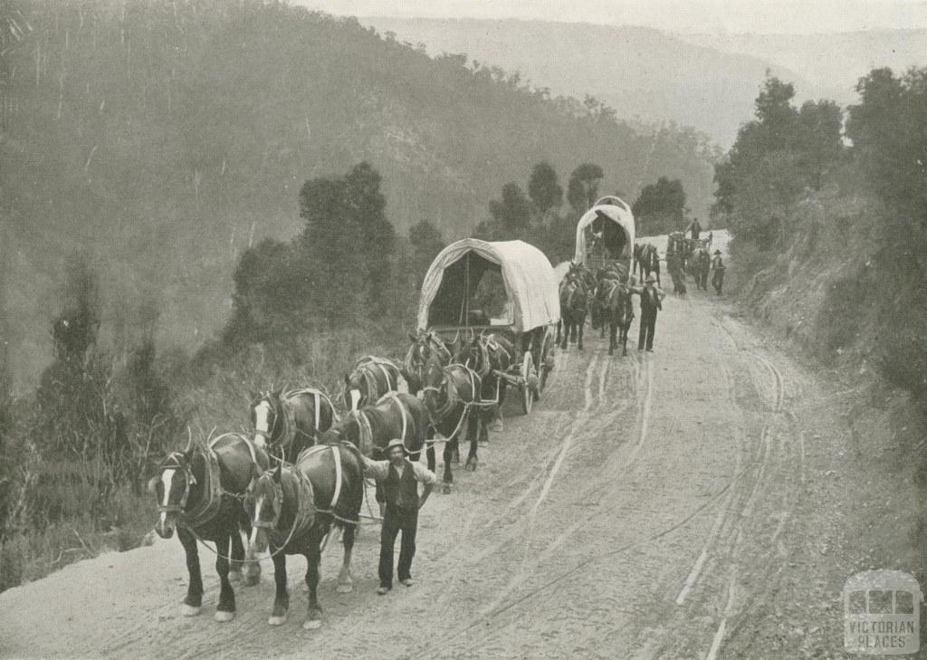 Teamsters, Walhalla, c1910