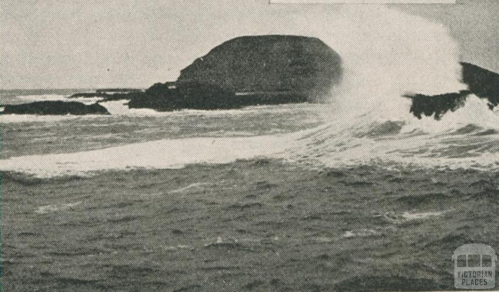 The Nobbies, off Phillip Island, 1910
