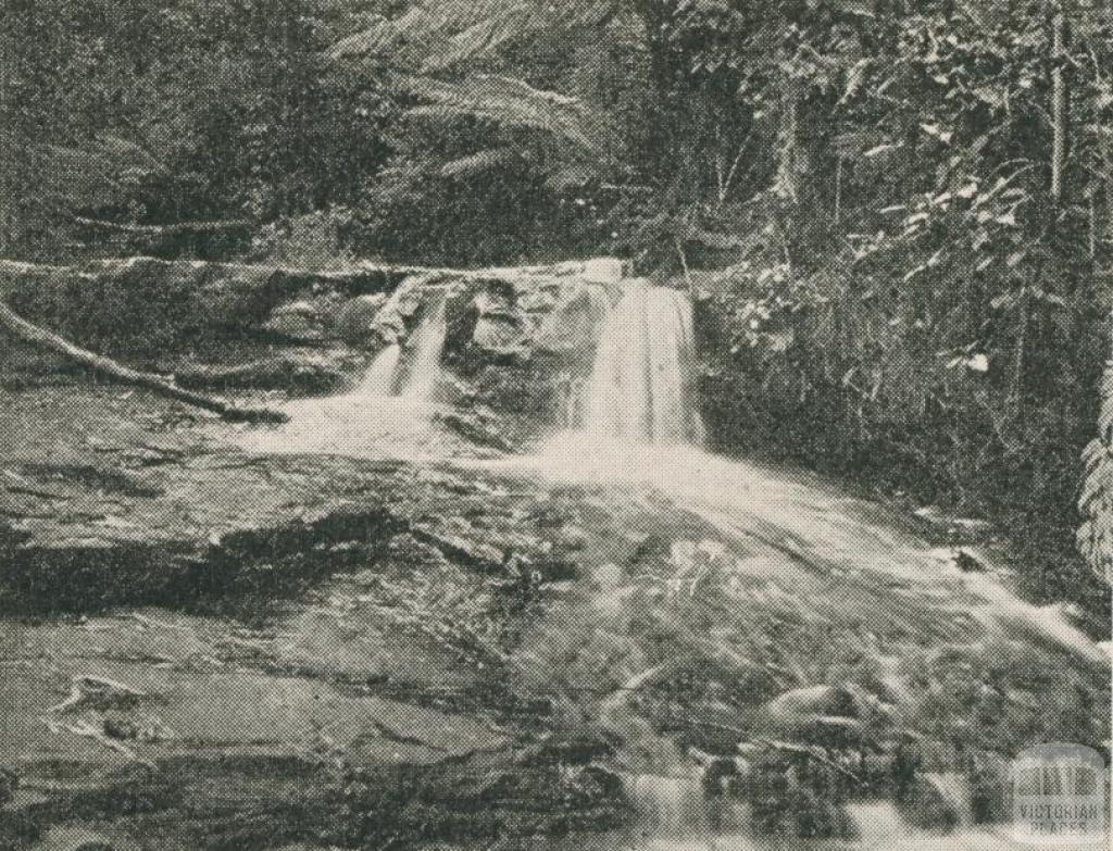 Sheoak Creek, Lorne, 1910