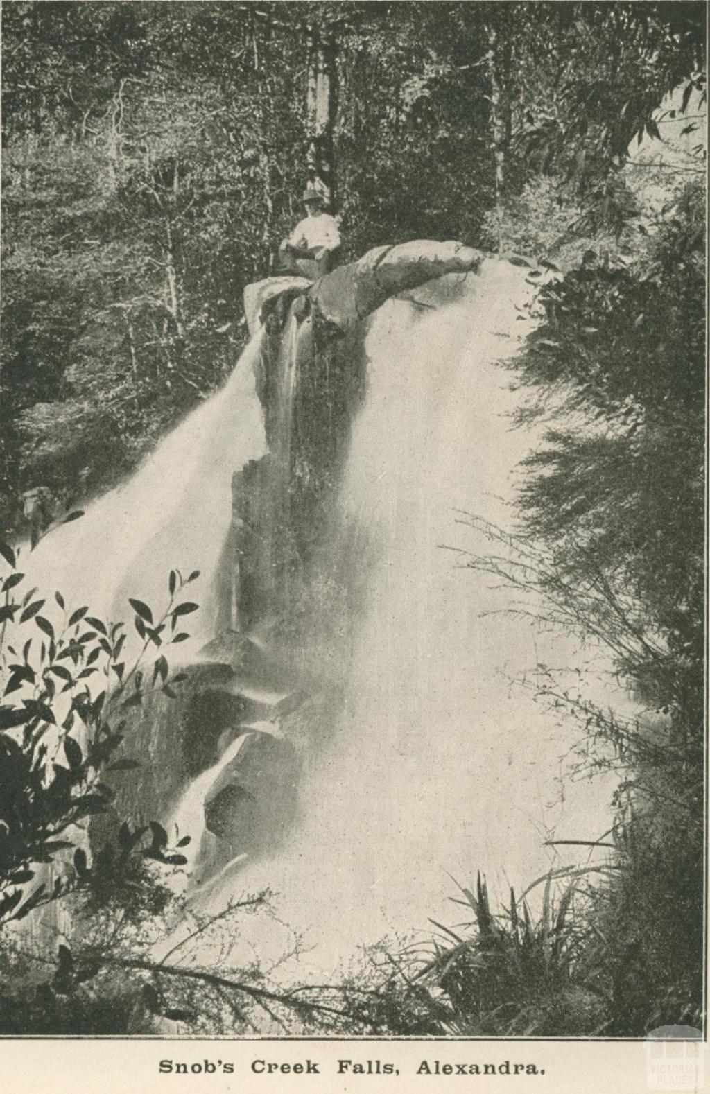 Snob's Creek Falls, Alexandra Shire, 1919