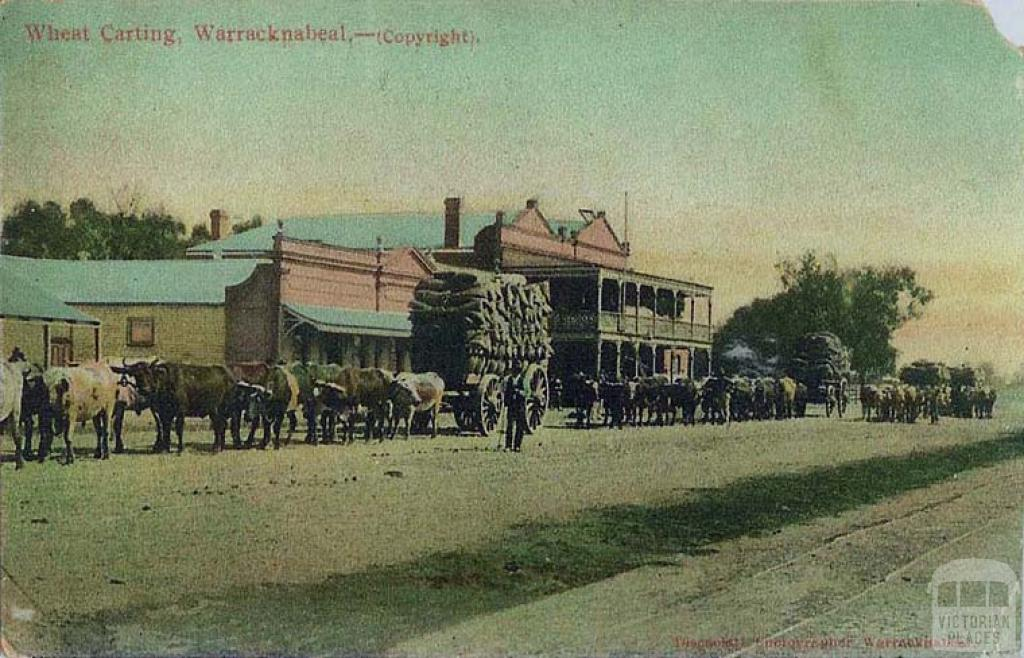 Wheat carting, Warracknabeal, c1906