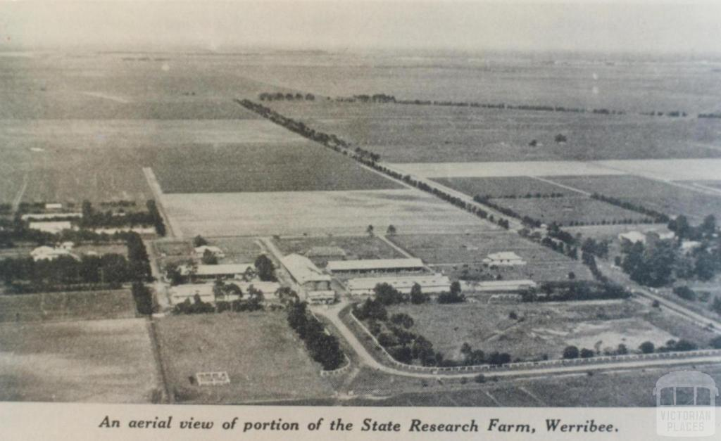 Aeriel view of State Research Farm, Werribee, 1936