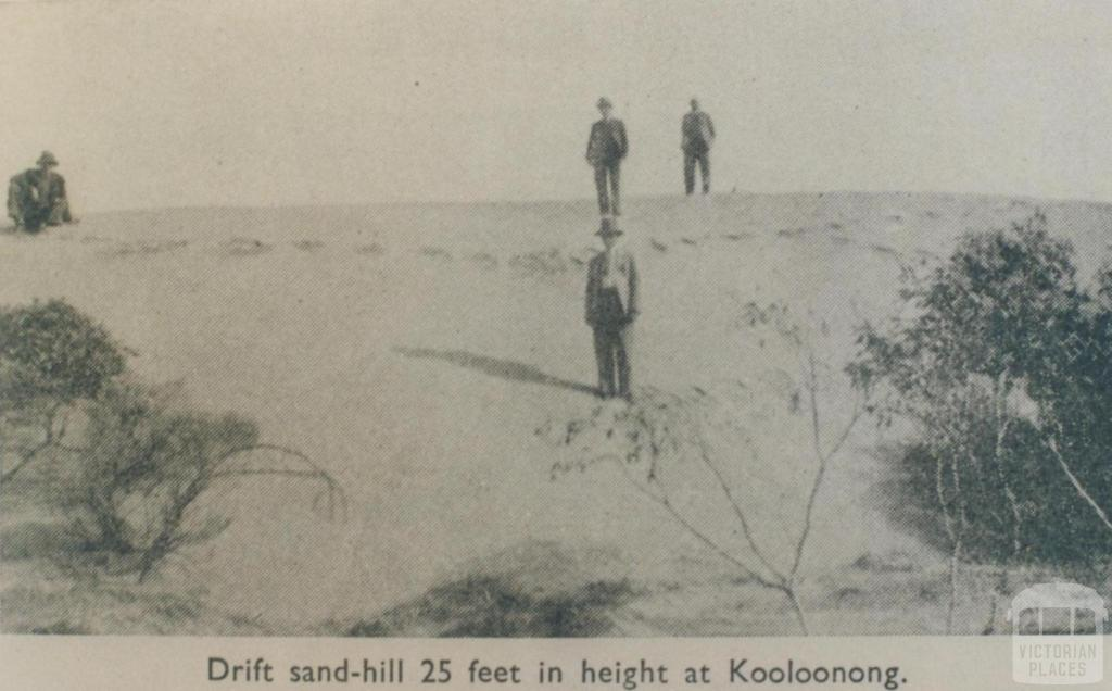 Sandhill at Kooloonong, Swan Hill Shire, 1944