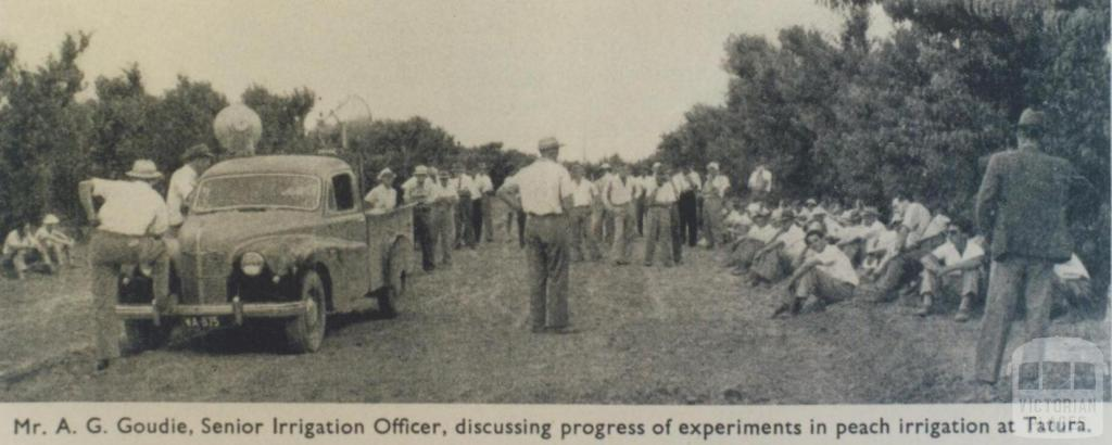 Fruit growers' field day, Tatura Research Station, 1952