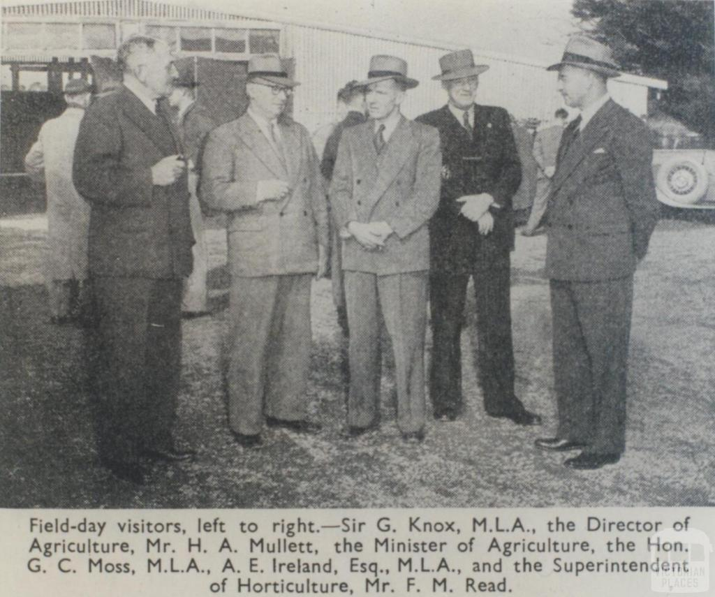 Scoresby Horticultural Research Station field day, 1951