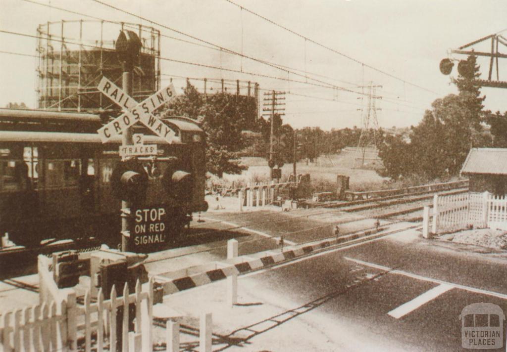 Tooronga railway crossing, 1954
