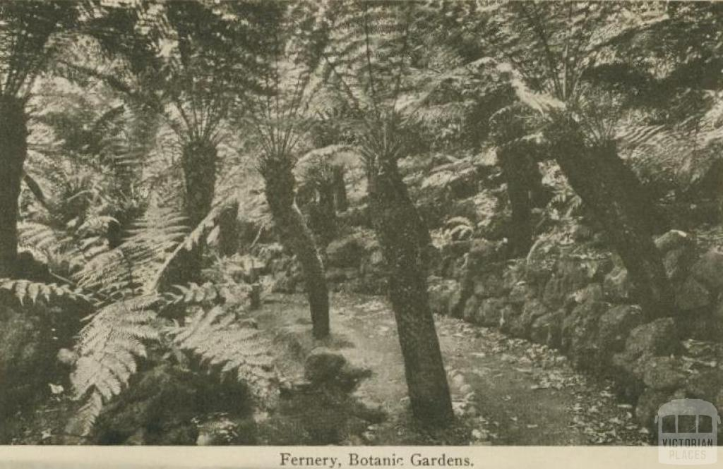 Fernery, Botanic Gardens, Daylesford