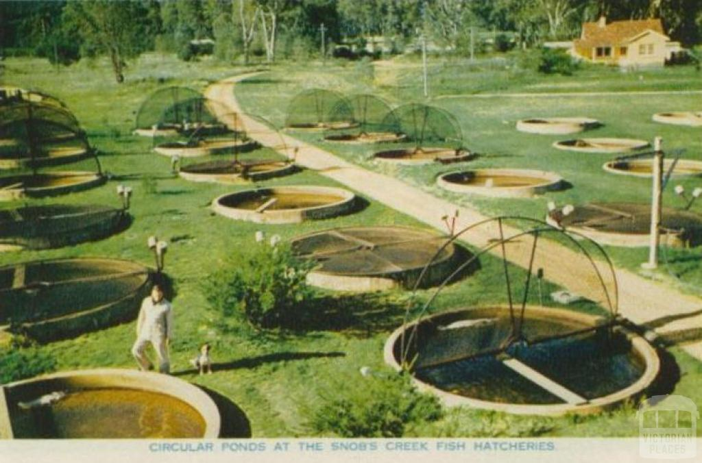 Circular Ponds at the Snob's Creek Fish Hatcheries