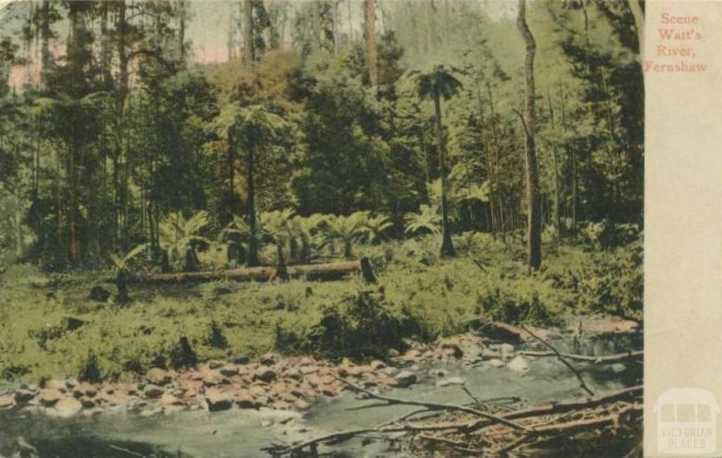 Scene Watt's River, Fernshaw