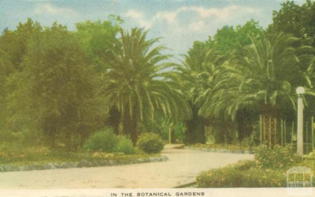 In the Botanical Gardens, Horsham, 1951
