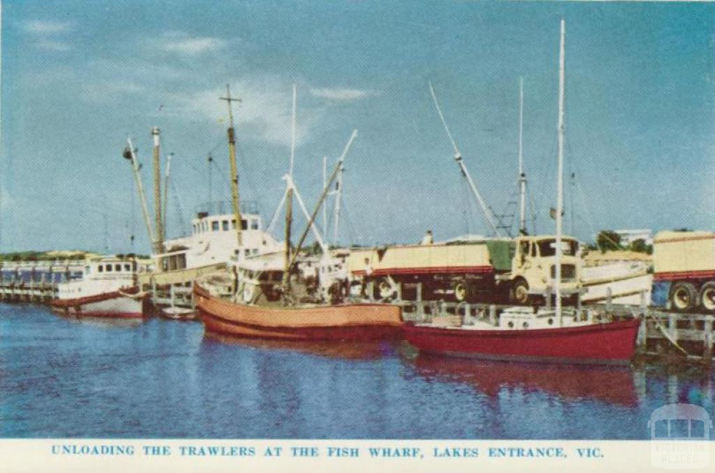 Unloading the trawlers at the Fish Wharf, Lakes Entrance, 1965