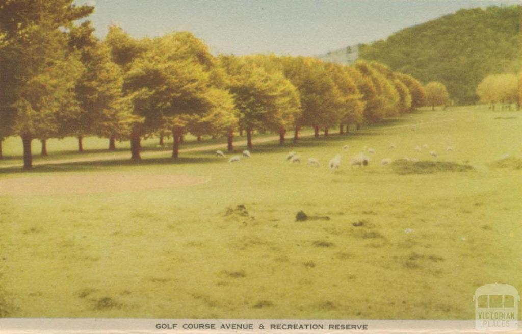 Golf Course Avenue and Recreation Reserve, Myrtleford, 1953