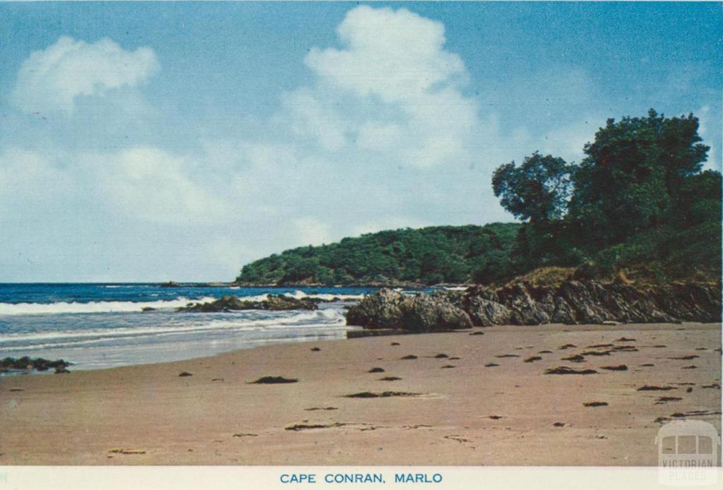 Cape Conran, Marlo