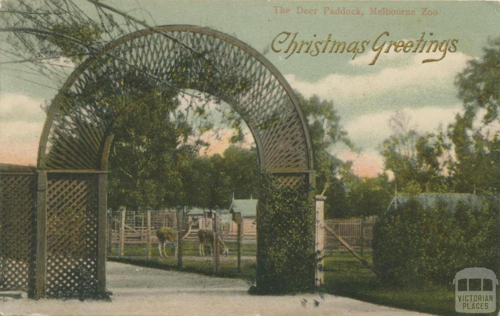 The Deer Paddock, Melbourne Zoo, Parkville, 1903