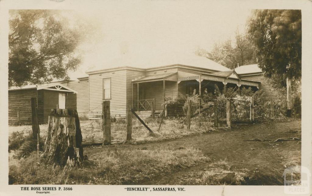 Hinckley, Sassafras