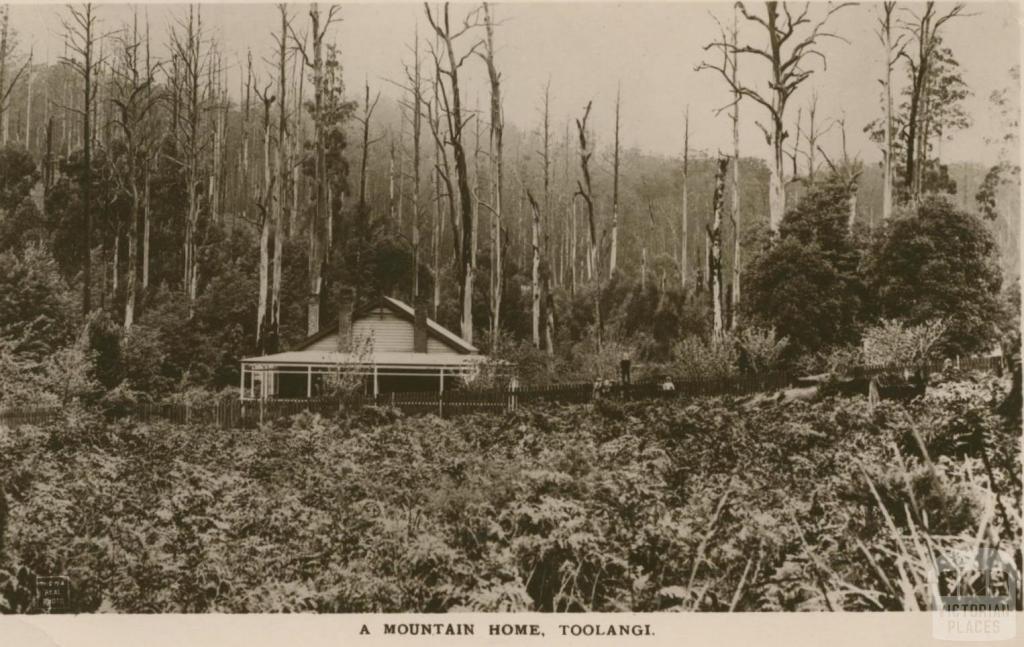 A Mountain Home, Toolangi, 1917